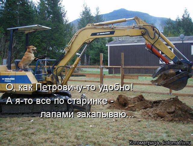 Котоматрица: О, как Петровичу-то удобно! А я-то все по старинке -  лапами закапываю...