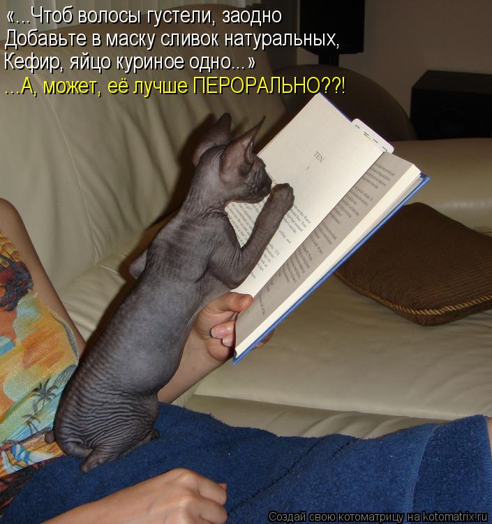 http://kotomatrix.ru/images/lolz/2015/02/12/kotomatritsa_c.jpg