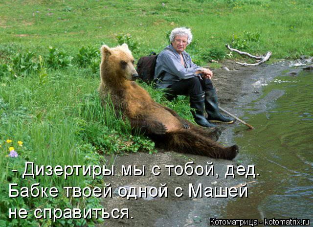 Котоматрица: - Дизертиры мы с тобой, дед. Бабке твоей одной с Машей  не справиться.