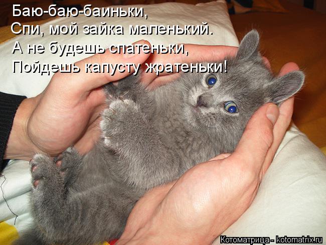 http://kotomatrix.ru/images/lolz/2015/02/14/kotomatritsa_0u.jpg