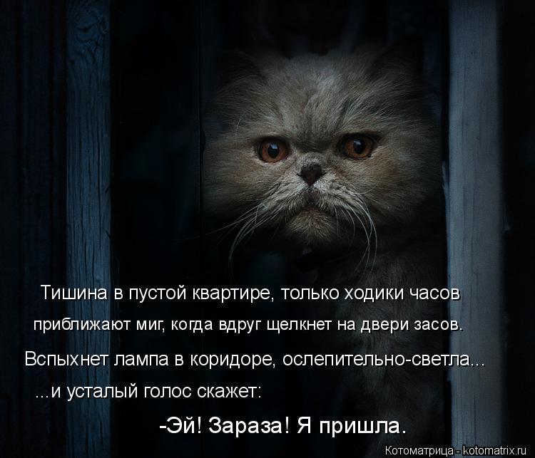 Котоматрица: Тишина в пустой квартире, только ходики часов приближают миг, когда вдруг щелкнет на двери засов. Вспыхнет лампа в коридоре, ослепительно-с