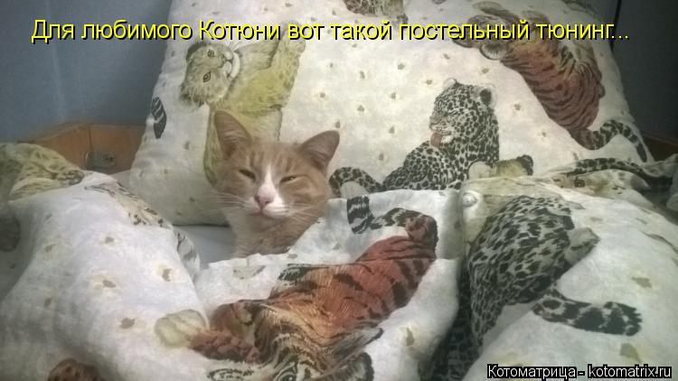 Котоматрица: Для любимого Котюни вот такой постельный тюнинг...