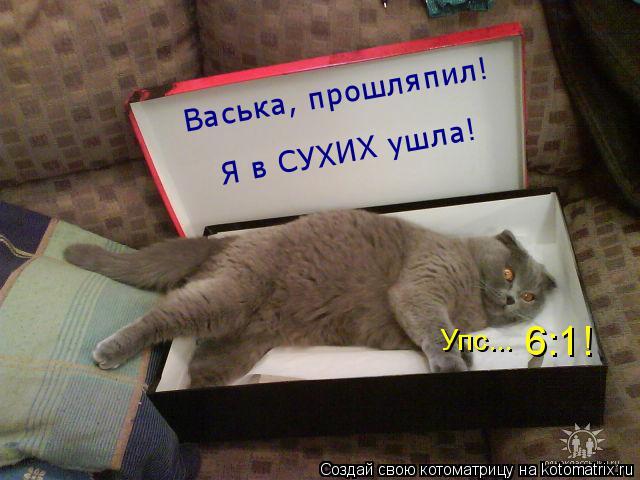 Котоматрица: Васька, прошляпил! Я в СУХИХ ушла! Упс...  6:1!