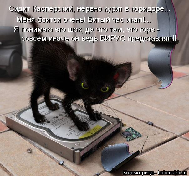 http://kotomatrix.ru/images/lolz/2015/02/16/kotomatritsa_lK.jpg