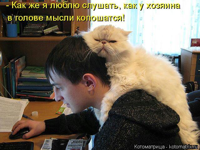 Котоматрица: - Как же я люблю слушать, как у хозяина в голове мысли копошатся!