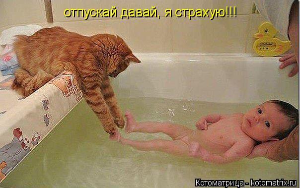 Котоматрица: отпускай давай, я страхую!!!