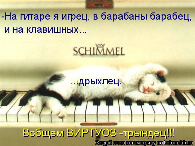 Котоматрица: -На гитаре я игрец, в барабаны барабец, и на клавишных... ...дрыхлец. Вобщем ВИРТУОЗ -трындец!!!