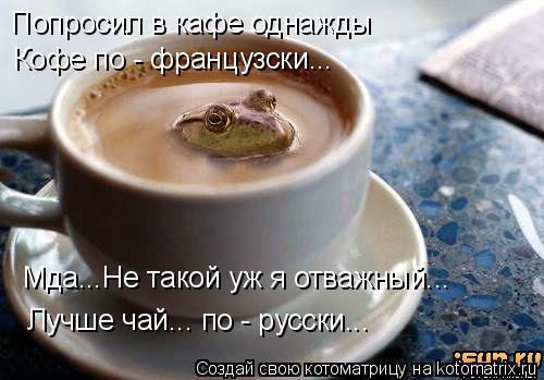 Котоматрица: Попросил в кафе однажды Кофе по - французски... Мда...Не такой уж я отважный... Лучше чай... по - русски...