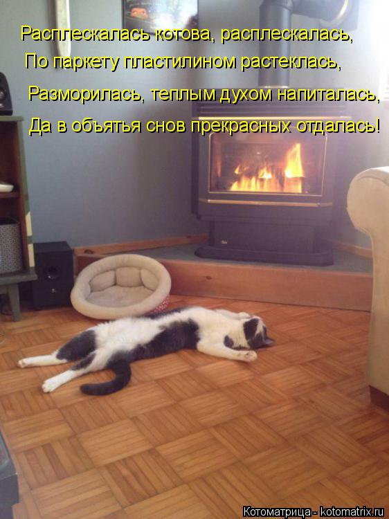 Котоматрица: Расплескалась котова, расплескалась, По паркету пластилином растеклась, Разморилась, теплым духом напиталась, Да в объятья снов прекрасны