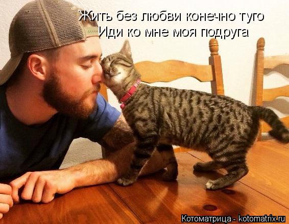 Котоматрица: Жить без любви конечно туго Иди ко мне моя подруга