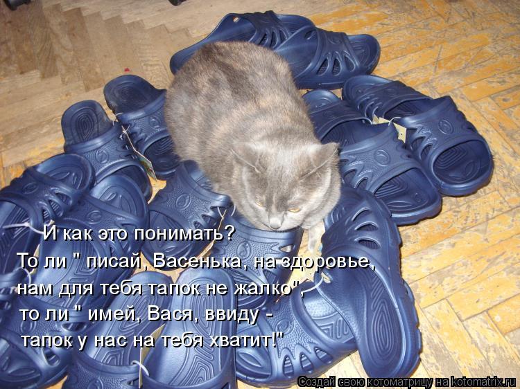 """Котоматрица: И как это понимать? нам для тебя тапок не жалко"""", то ли """" имей, Вася, ввиду -  То ли """" писай, Васенька, на здоровье,  тапок у нас на тебя хватит!"""""""