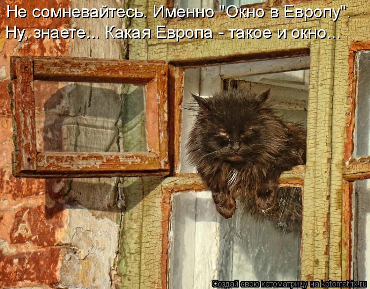"""Котоматрица: Не сомневайтесь. Именно """"Окно в Европу"""".  Ну, знаете... Какая Европа - такое и окно..."""