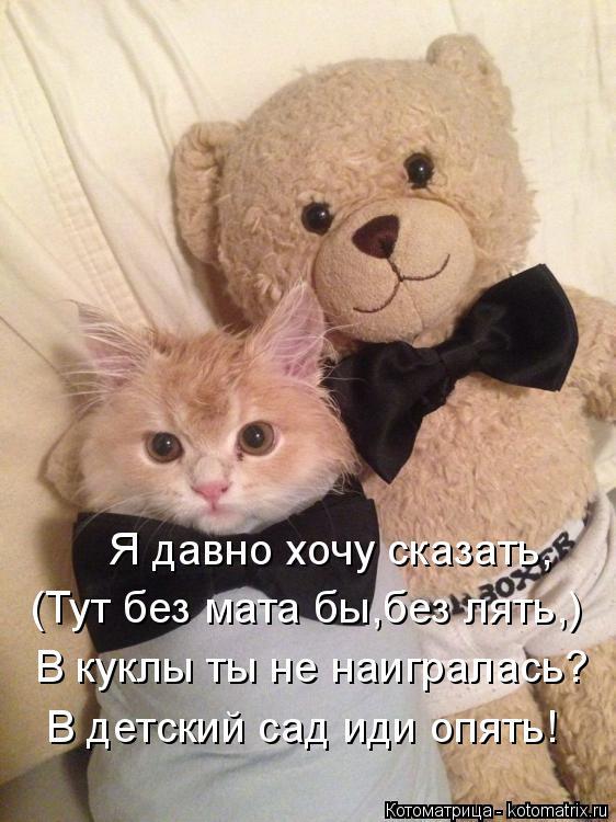 Котоматрица: Я давно хочу сказать, (Тут без мата бы,без лять,) В куклы ты не наигралась? В детский сад иди опять!