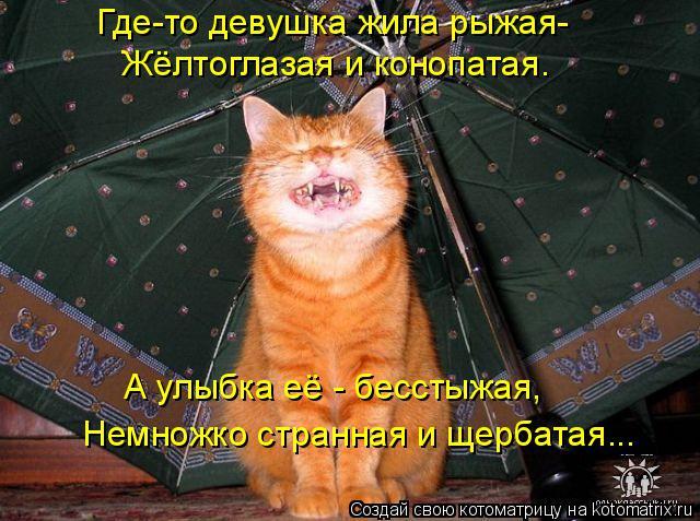 Котоматрица: Где-то девушка жила рыжая- Жёлтоглазая и конопатая. А улыбка её - бесстыжая, Немножко странная и щербатая...