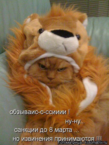 Котоматрица: обзываис-с-ссииии ! ну-ну... санкции до 8 марта ... но извинения принимаются !!!