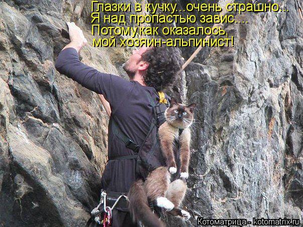 Котоматрица: Глазки в кучку...очень страшно... Я над пропастью завис.... Потому,как оказалось, мой хозяин-альпинист!