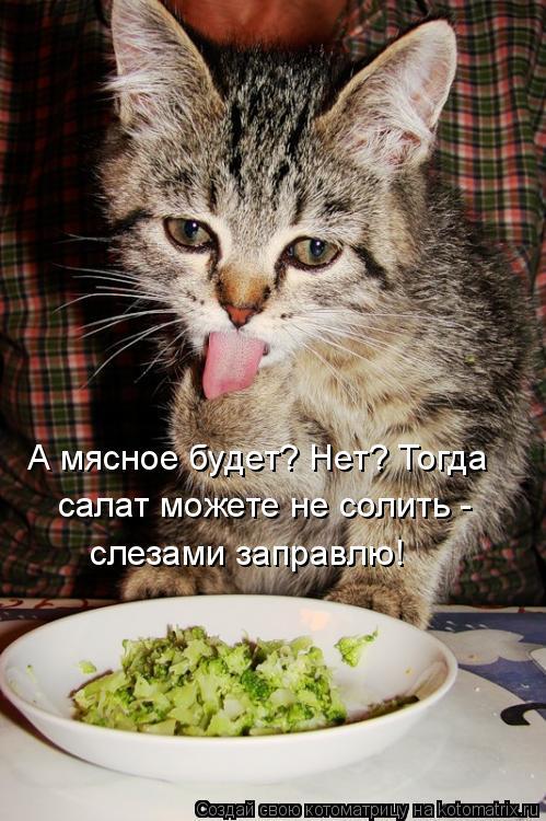 Котоматрица: А мясное будет? Нет? Тогда салат можете не солить - слезами заправлю!