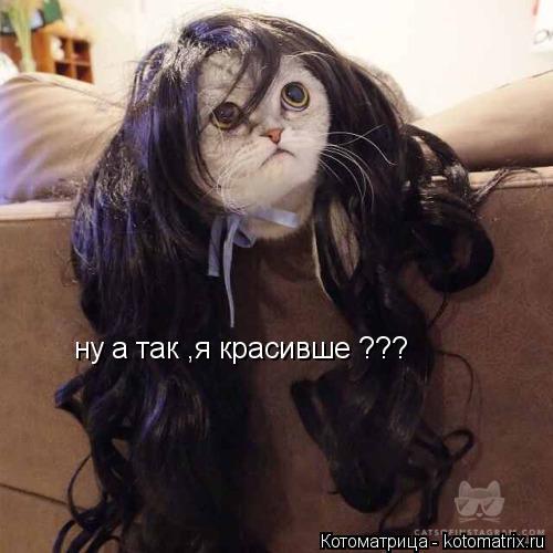 Котоматрица: ну а так ,я красивше ???