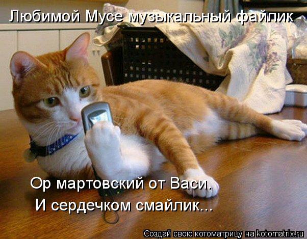 Котоматрица: Любимой Мусе музыкальный файлик Ор мартовский от Васи. И сердечком смайлик...