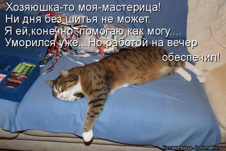 Котоматрица: Хозяюшка-то моя-мастерица! Ни дня без шитья не может. Я ей,конечно ,помогаю,как могу.... Уморился уже...Но работой на вечер обеспечил!