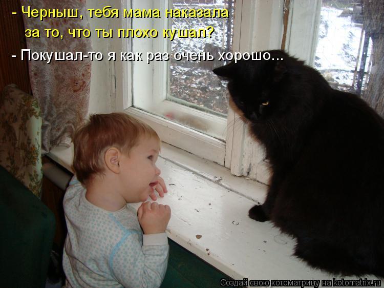 Котоматрица: - Черныш, тебя мама наказала  за то, что ты плохо кушал? - Покушал-то я как раз очень хорошо...