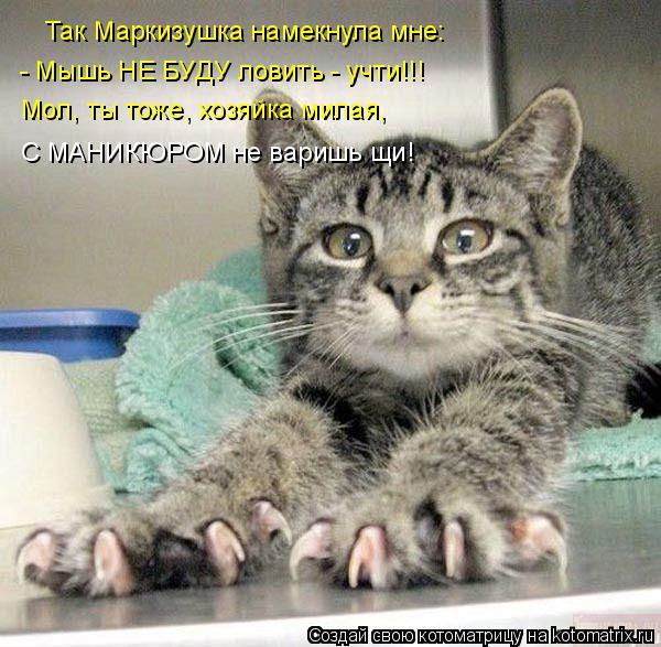 Котоматрица: Так Маркизушка намекнула мне: - Мышь НЕ БУДУ ловить - учти!!! Мол, ты тоже, хозяйка милая, С МАНИКЮРОМ не варишь щи!