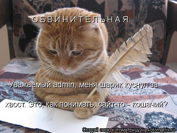 Котоматрица: О Б В И Н И Т Е Л Ь Н А Я: Уважаемый admin, меня шарик куснул за хвост. Это, как понимать, сайт-то - кошачий?
