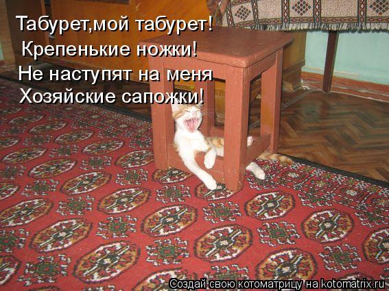 Котоматрица: Табурет,мой табурет! Крепенькие ножки! Хозяйские сапожки! Не наступят на меня