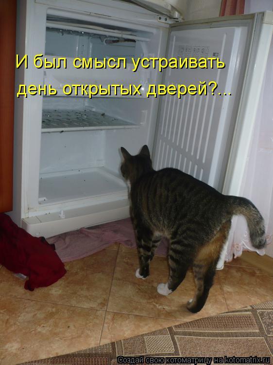 Котоматрица: И был смысл устраивать день открытых дверей?...