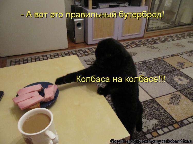Котоматрица: Колбаса на колбасе!!! - А вот это правильный бутерброд!