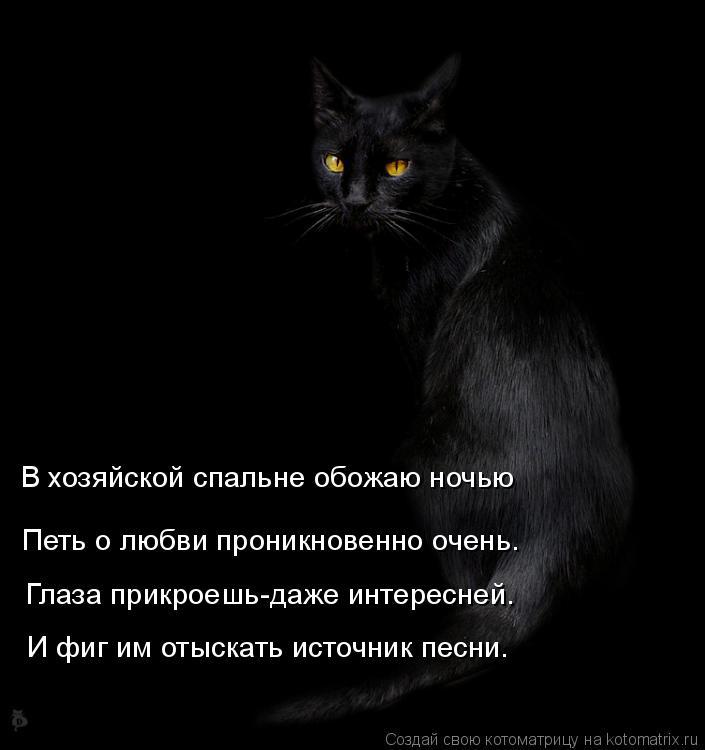 Котоматрица: В хозяйской спальне обожаю ночью  Петь о любви проникновенно очень. Глаза прикроешь-даже интересней. И фиг им отыскать источник песни.