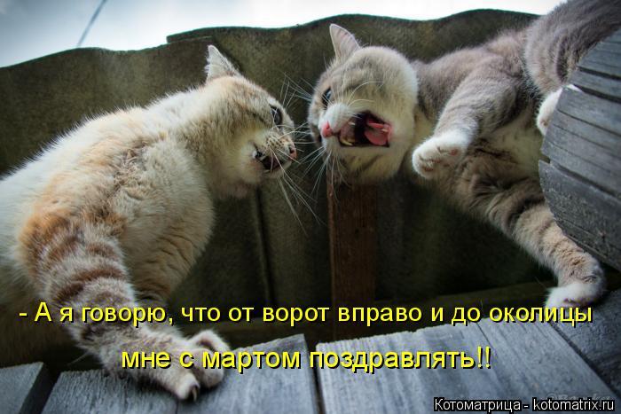 Котоматрица: - А я говорю, что от ворот вправо и до околицы мне с мартом поздравлять!!
