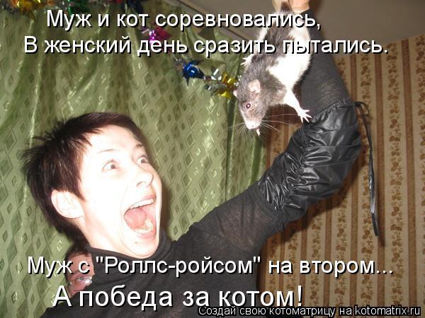 """Котоматрица: Муж и кот соревновались, В женский день сразить пытались. Муж с """"Роллс-ройсом"""" на втором... А победа за котом!"""