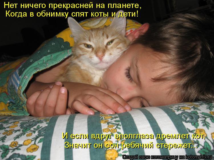 Котоматрица: Нет ничего прекрасней на планете, Когда в обнимку спят коты и дети! Значит он сон ребячий стережет... И если вдруг вполглаза дремлет кот,