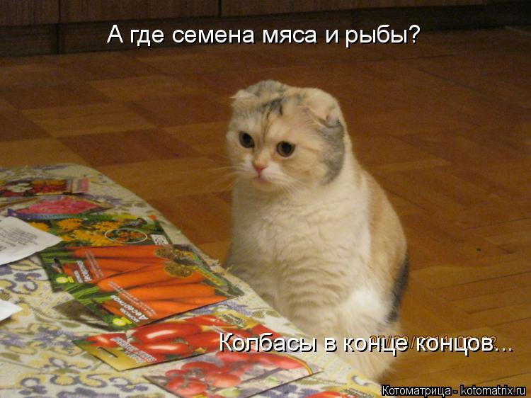 Котоматрица: А где семена мяса и рыбы? Колбасы в конце концов...
