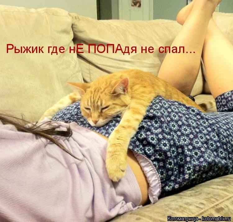 Котоматрица: Рыжик где нЕ ПОПАдя не спал...