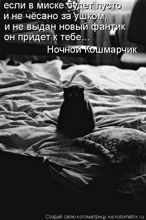 Котоматрица: если в миске будет пусто и не чёсано за ушком, и не выдан новый фантик он придет к тебе... Ночной Кошмарчик