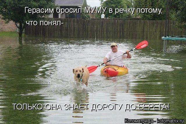 Котоматрица: Герасим бросил МУМУ в речку потому, что понял- ТОЛЬКО ОНА ЗНАЕТ ДОРОГУ ДО БЕРЕГА!