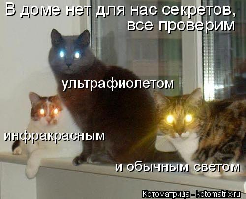 Котоматрица: В доме нет для нас секретов, все проверим ультрафиолетом инфракрасным и обычным светом