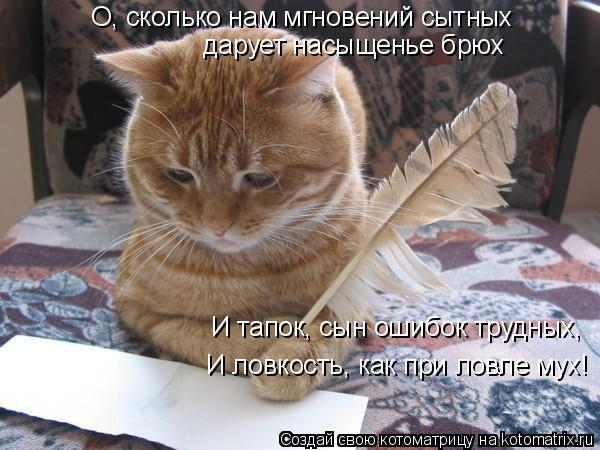Котоматрица: О, сколько нам мгновений сытных  дарует насыщенье брюх И тапок, сын ошибок трудных,  И ловкость, как при ловле мух!