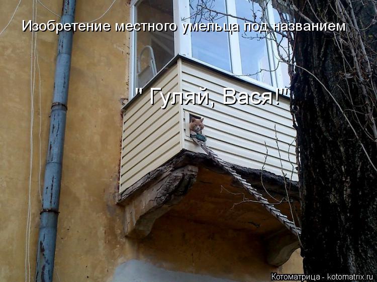 """Котоматрица: Изобретение местного умельца под названием  """" Гуляй, Вася!"""""""