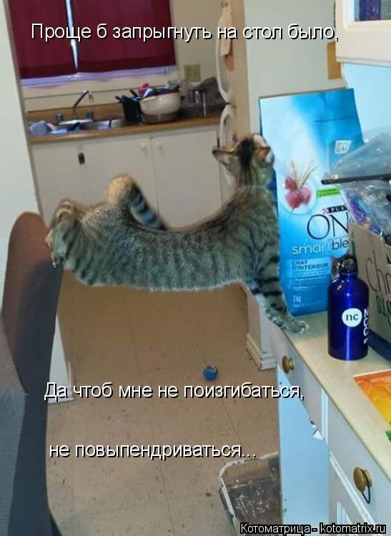 Котоматрица: Проще б запрыгнуть на стол было, Да чтоб мне не поизгибаться, не повыпендриваться...