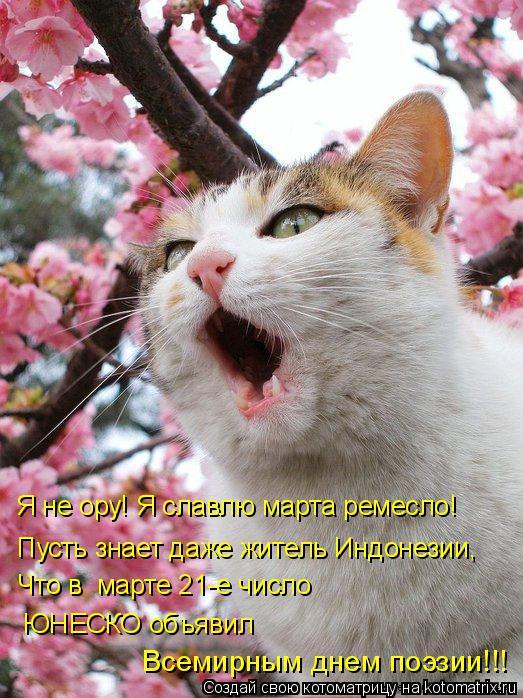 Котоматрица: Что в  марте 21-е число ЮНЕСКО объявил Всемирным днем поэзии!!! Я не ору! Я славлю марта ремесло! Пусть знает даже житель Индонезии,