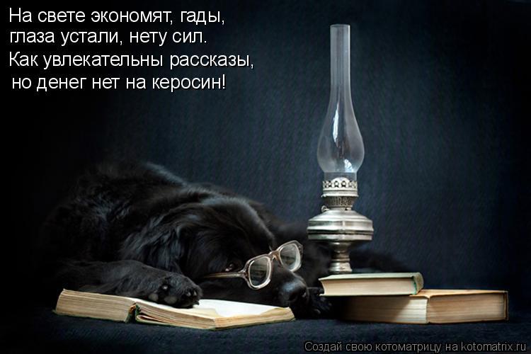 Котоматрица: На свете экономят, гады, глаза устали, нету сил. Как увлекательны рассказы, но денег нет на керосин!