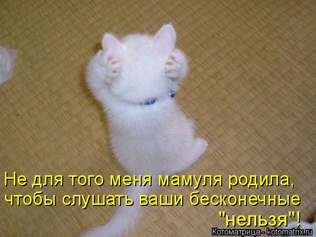 """Котоматрица: Не для того меня мамуля родила, чтобы слушать ваши бесконечные """"нельзя""""!"""