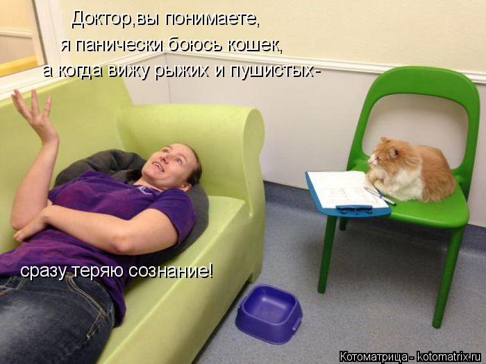 Котоматрица: Доктор,вы понимаете, я панически боюсь кошек, а когда вижу рыжих и пушистых- сразу теряю сознание!