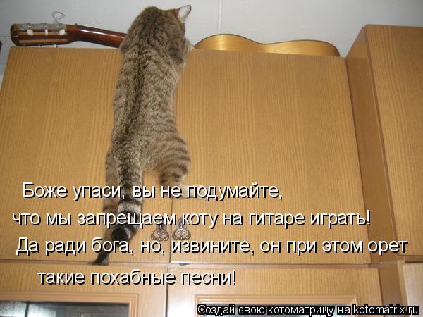 Котоматрица: Боже упаси, вы не подумайте, что мы запрещаем коту на гитаре играть! Да ради бога, но, извините, он при этом орет такие похабные песни!
