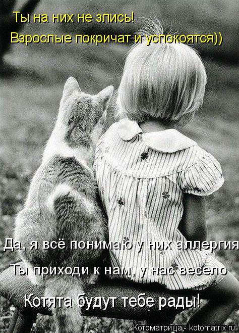Котоматрица: Взрослые покричат и успокоятся)) Ты на них не злись! Да, я всё понимаю у них аллергия Ты приходи к нам, у нас весело Котята будут тебе рады!