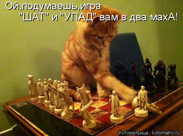 "Котоматрица: Ой,подумаешь,игра ""ШАТ"" и ""УПАД"" вам в два махА!"