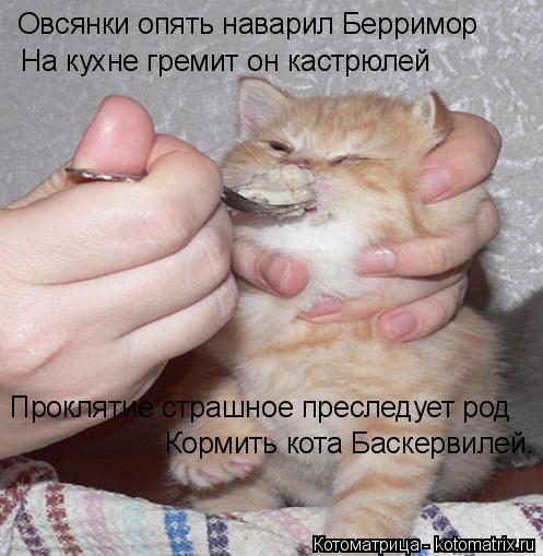 Котоматрица: Овсянки опять наварил Берримор На кухне гремит он кастрюлей Проклятие страшное преследует род Кормить кота Баскервилей.